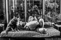 Dogs of Sydney (5 of 30)