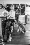 Dogs of Sydney 01 (9 of 10)