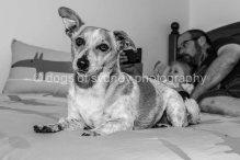 Hugo (9 of 12)