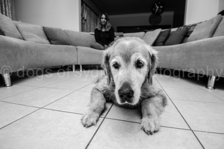 Bailey-Blog (2 of 17)
